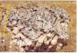 Камень степной крановый
