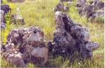 Камень степной «Дикарь»